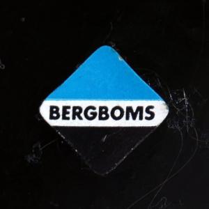 Bergboms