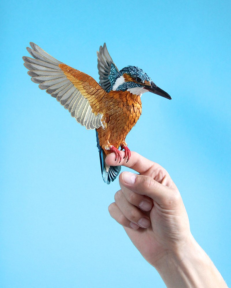 Common Kingfisher by Diana Beltran Herrera. Paper Sculpture. 2014