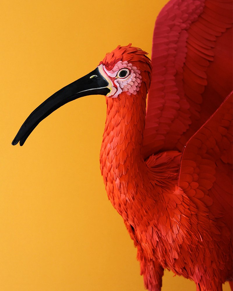 Bird from an installation commissioned by MAX MARA for the Marina Rinaldi shop. 2014.