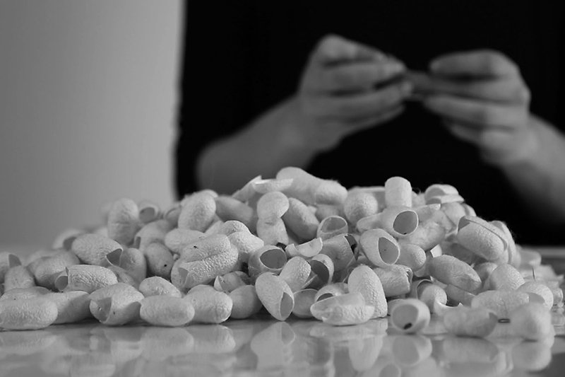 Discarded silkworm cocoons, photo © Thibault Picazo Y. & Combal Weiss H. from Studio Immatters (2014)