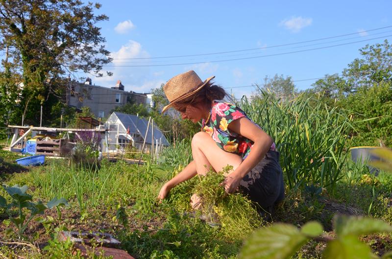 in-may-garden