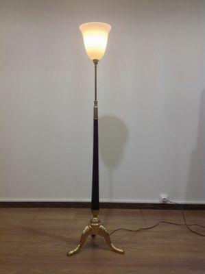 Brass and mahogany tripod floor lamp 1930s for sale at pamono brass and mahogany tripod floor lamp 1930s 2 aloadofball Gallery