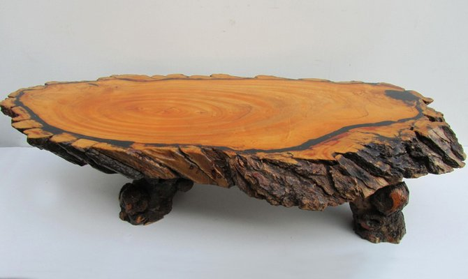 Side Table Opruiming.Large Tree Trunk Coffee Table 1960s
