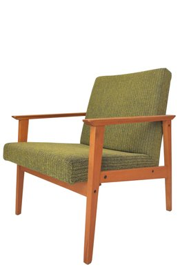 Mid Century Tropical Green Armchair 1960s For Sale At Pamono