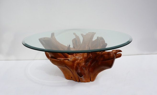 Outstanding Mid Century Teak Tree Root Coffee Table With Beveled Glass Top Download Free Architecture Designs Scobabritishbridgeorg