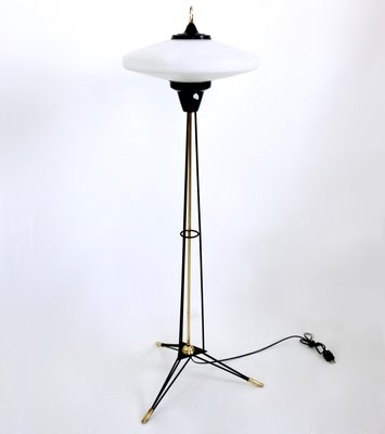 Italian Floor Lamp With Opaline Glass Shade By Stilnovo, 1950s 1