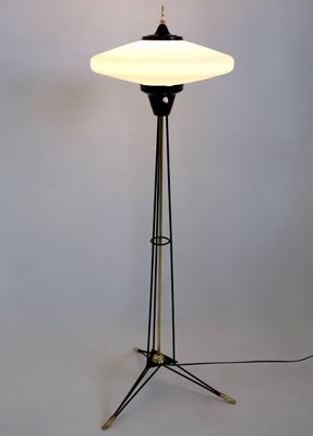 Italian Floor Lamp With Opaline Glass Shade By Stilnovo, 1950s 2