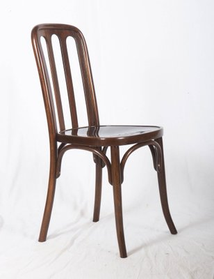 Antique Dining Chair By Josef Hoffmann For Thonet, 1910s 1