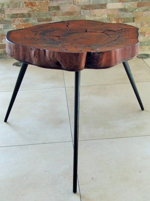Tree Trunk Coffee Table 1950s