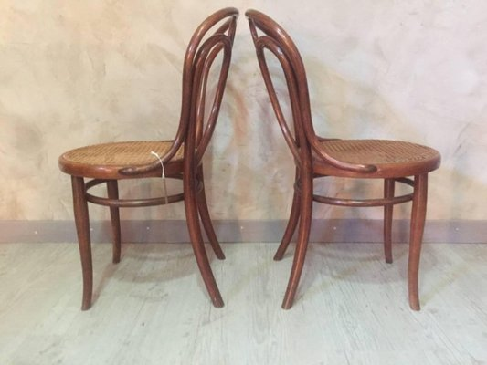 Groovy Antique Cane Dining Chairs From Thonet 1900S Set Of 2 Ncnpc Chair Design For Home Ncnpcorg