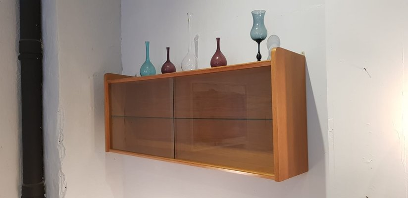 Vintage Wall-Mounted Display Case, 1950s