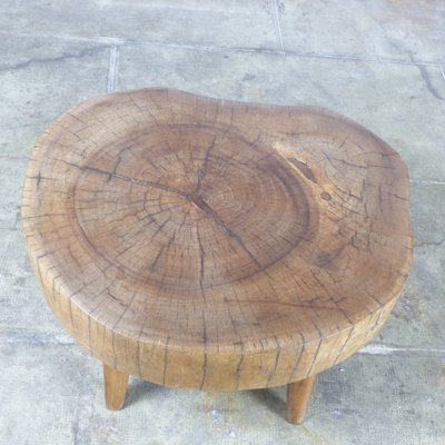 Tree Trunk Coffee Table 4