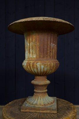 Antique Medici Garden Urns, Set of 2