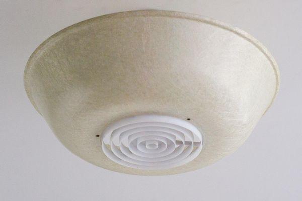 Lampade In Vetroresina : Capannina coibentata accrescimento suinetti riscaldamento con
