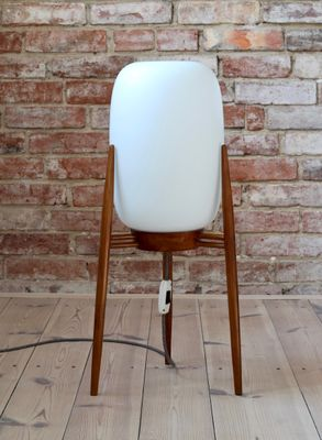 Space Age Glass & Wood Tripod Floor Lamp, 1960s