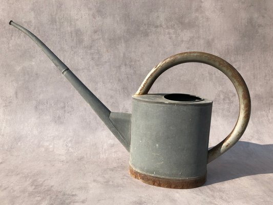 Zinc Watering Can 1950s For At Pamono