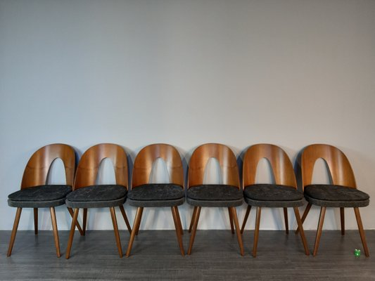 Fabric Dining Chairs By Antonin Suman