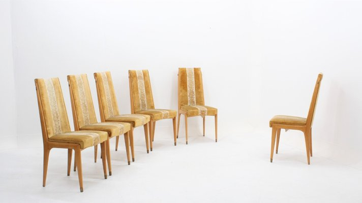 online store dbd13 c52e4 Mid-Century Maple Dining Chairs by Vittorio Dassi, Set of 6