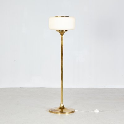 Br And Frosted Gl Floor Lamp
