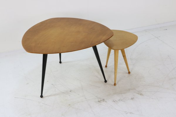 Vintage Tb39 Kidney Shaped Coffee Tables By Cees Braakman For Pastoe Set Of 2 For Sale At Pamono