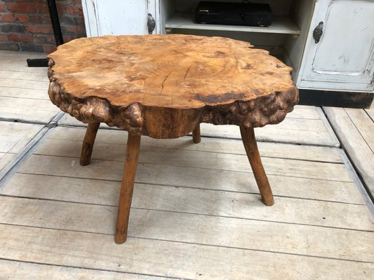 Tree Trunk Coffee Table 1