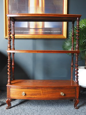 Prime Antique Regency Rosewood Display Stand Caraccident5 Cool Chair Designs And Ideas Caraccident5Info