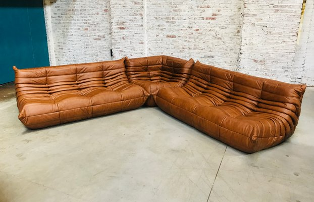 Groovy Cognac Leather Togo Sofa Living Room Set By Michel Ducaroy For Ligne Roset 1970S Pabps2019 Chair Design Images Pabps2019Com