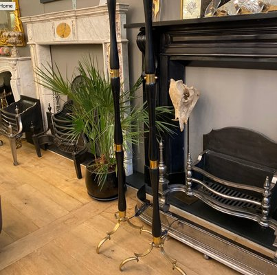 Br And Ebonized Wood Floor Lamps
