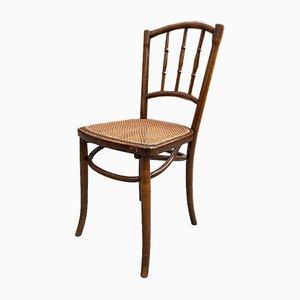 Schilfrohr Stühle, 4er Set