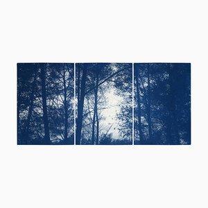 Forest Silhouette Sunset, Blue Nature Großes Triptychon, Cyanotypie auf Papier, 2021