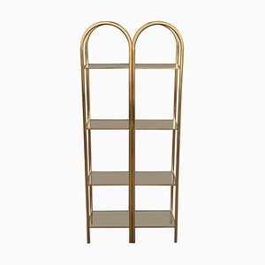 Mid-Century Brass Shelves with Smoked Glass, Set of 2