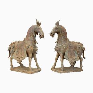 Chevaux de la Dynastie Wei du Nord en Terracotta, Set de 2