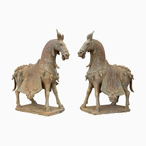 Northern Wei Dynasty Terracotta Horses, Set of 2