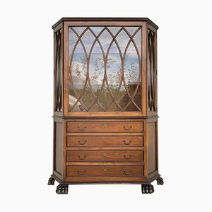 French Art Nouveau Fruitwood Wooden Showcase Vitrine with 4 Drawers