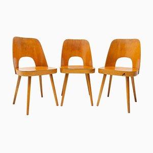 Mid-Century Esszimmerstühle von Radomír Hofman für Ton, 1960er, 3er Set