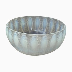 Model 419 Opalescent Perrucks Bowl by Rene Lalique