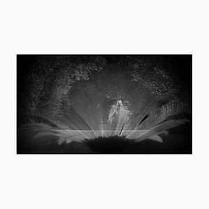 Anna Golovanova, View III, Digital Photographic Art, 2020