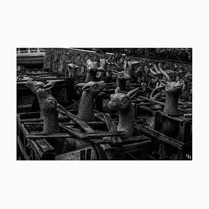 Ksenia Kokovashina, Deers, Digital Photographic Art, 2020