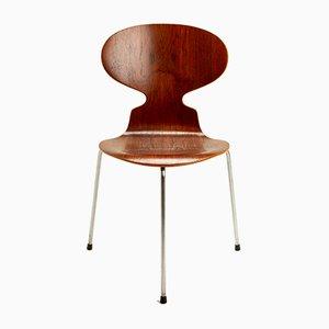 Silla Ant de teca de Arne Jacobsen para Fritz Hansen, Denmark, años 50