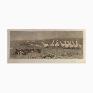 Le Renard et les Oies par Briton Riviere, 1868