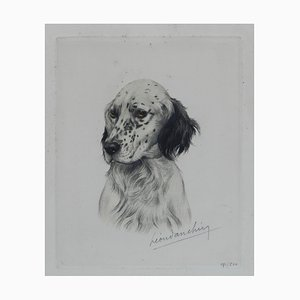 Vintage Handcolored Engaving Portrait of a Setter by Leon Danchin, 1920-30