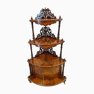 Large Antique Victorian Inlaid Burr Walnut Corner Cabinet