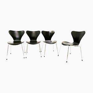 Schwarze Serie 7 Stühle von Arne Jacobsen für Fritz Hansen, 4er Set