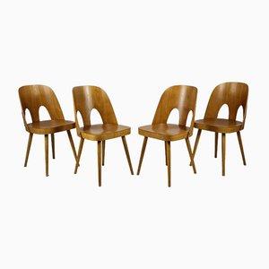 Holzstühle von Oswald Haerdtl für Ton, 1960er, 4er Set