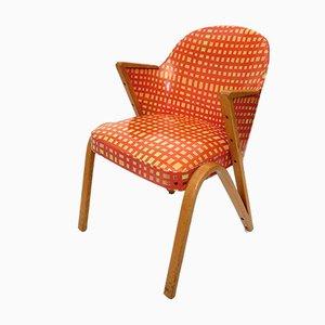 Mid-Century Swing Chair, 1950s