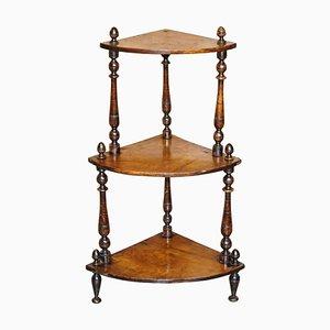 Antique Burr Walnut Whatnot or Corner Bookcase, 1860s