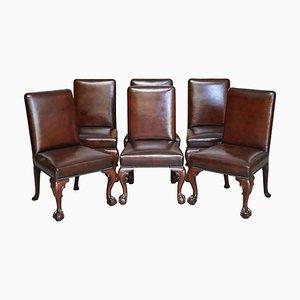 Braune Leder & Hartholz Claw & Ball Esszimmerstühle, 6er Set