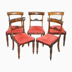 William IV Hardwood Dining Chairs, 1830s, Set of 5