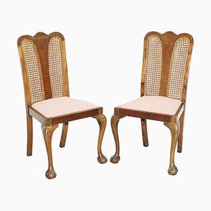 Hartholz Stühle mit Klauenfüßen, 1940er, 2er Set