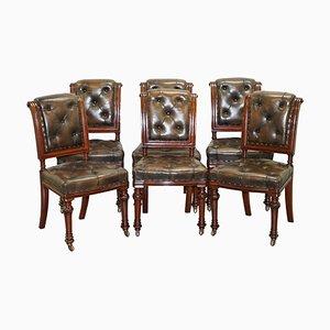 Viktorianische Chesterfield Esszimmerstühle aus braunem Leder von John Crowe & Sons, 6er Set